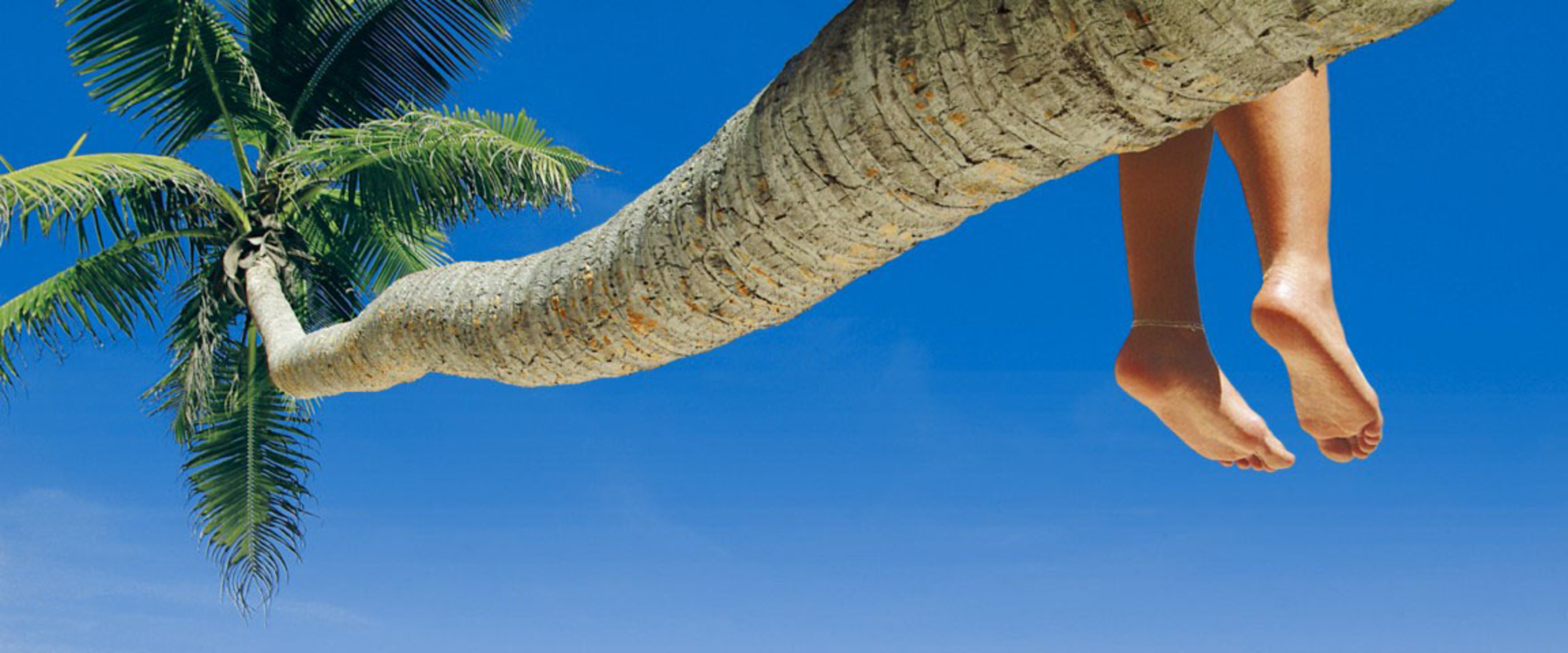What is the best time of the year to go to punta cana?