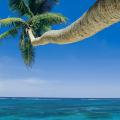 when is hurricane season in punta cana?