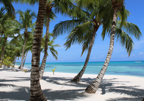 why is punta cana so cheap?